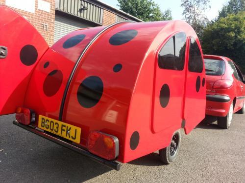 Snibston Ladybird