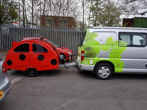 Another Ladybird gets new home