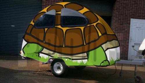 Snibston Tortoise